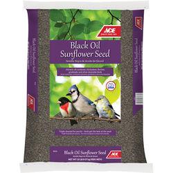 Ace  Black Oil Sunflower  Songbird  Black Oil Sunflower Wild Bird Food  Black Oil Sunflower Seed  20