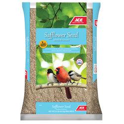 Ace  Safflower  Songbird  Wild Bird Food  Safflower Seeds  10 lb.