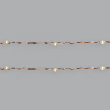 10' Copper Wire Indoor/Outdoor LED String Lights