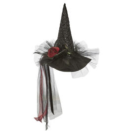 ADULT WITCH HATS 4A PEG view 1