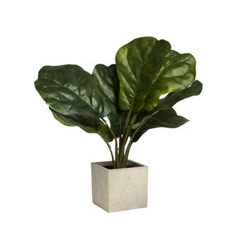 "21"" Artificial Round Leaf Plant in Pot view 1"