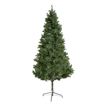 6.5' Pre-Lit Jackson Spruce Fir Artificial Christmas Tree view 1
