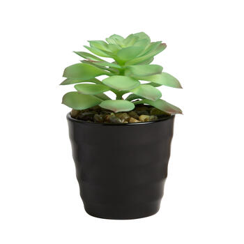 Round Ceramic Pot with Artificial Succulent view 1