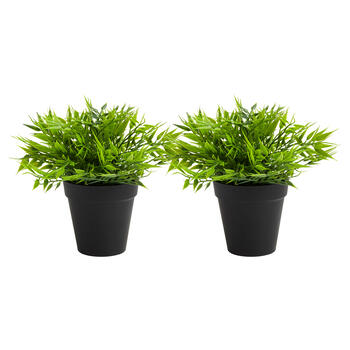 "9"" Black Pot Artificial Palm Plants, Set of 2 view 1"