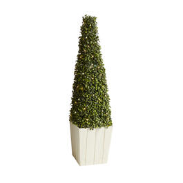 "36"" Cone-Shaped LED Boxwood Topiary view 1"