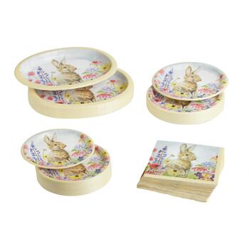 Springtime Rabbit Disposable Dinnerware Set