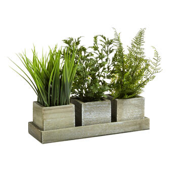 "11"" Artificial Ferns & Greenery in 3-Pot Wood Tray view 1"