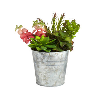 "9"" Metal Pot with Artificial Succulents view 1"