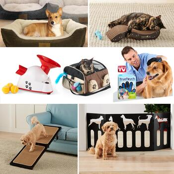 Great Gifts For Pets