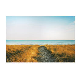 Sandy Coastal Path Photograph Canvas Wall Art view 1