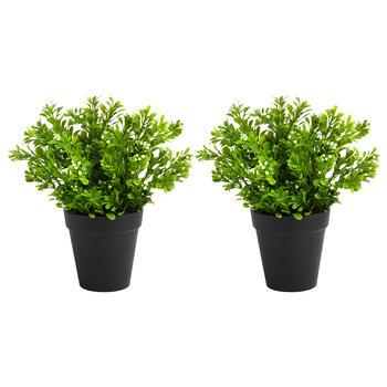 "9"" Black Pot Artificial Budded Plants, Set of 2 view 1"