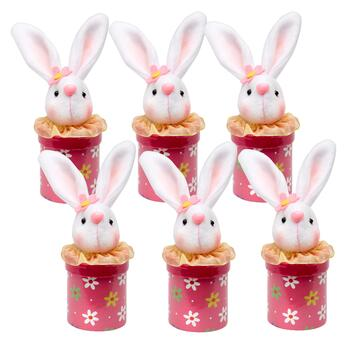 Pink Plush Mini Bunny Boxes, Set of 6