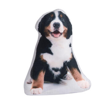 Bernese Mountain Dog Photorealistic Door Stopper view 1