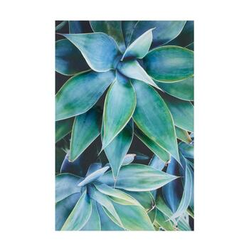 "24""x36"" Succulent Plant Leaves Canvas Wall Art"
