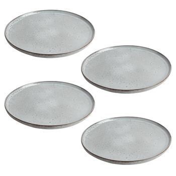 The Grainhouse™ Speckled Ceramic Dinner Plates, Set of 4