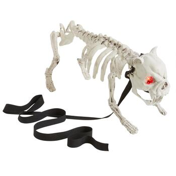 Lights & Sounds Dog Skeleton with LED Eyes and Leash