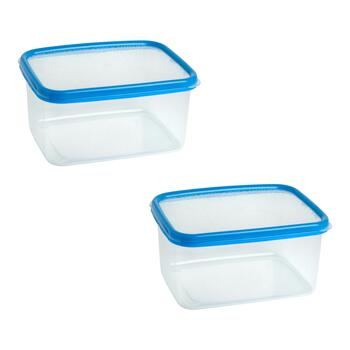 3-Qt. Blue Plastic Storage Containers, Set of 2