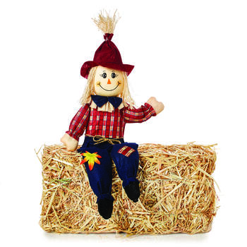 "SCARECROW SITTERS 24"" view 3"