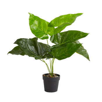 "15.5"" Artificial Broadleaf Potted Plant view 1"