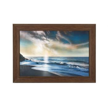 "30""x42"" Large Beach Palm Photograph Wall Art"