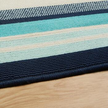 Blue Border All-Weather Rug view 2