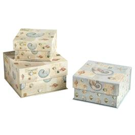 Tide Postage Shells Square Storage Boxes, Set of 3