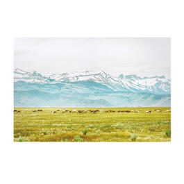 "24""x36"" Mountainous Field Canvas Wall Art view 1"