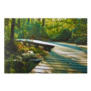 "24""x36"" Forest Pathway Canvas Wall Art"