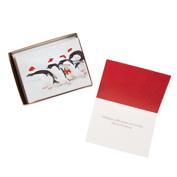 "15-Count ""Merry Christmas"" Penguins Holiday Cards, Set of 2 view 1"
