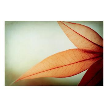 "24""x36"" Orange Flower Lacquer Canvas Wall Art"