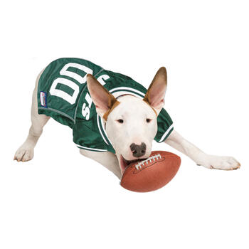 NFL New York Jets Pet Jersey view 3