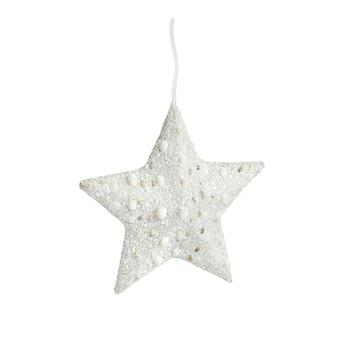 "12"" Shell Collage Star Hanger Ornament"