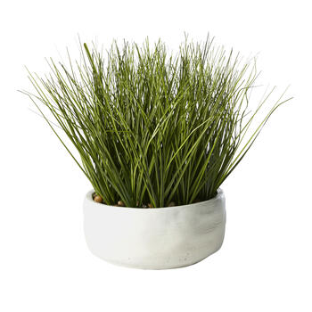 "GNRY ONION GRASS RND 12"" view 1"