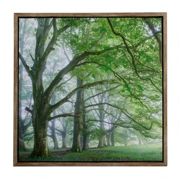 "24"" Forest Framed Wall Art"