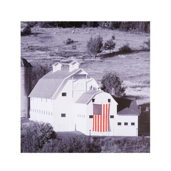 "30"" American Flag Farmhouse Canvas Wall Art"