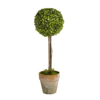 "24"" Spherical Boxwood Topiary Tree"