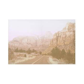 "24""x36"" Blush Canyons Canvas Wall Art"