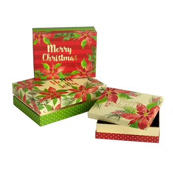 """Merry Christmas"" Poinsettia Rectangular Gift Box Set, 3-Piece"