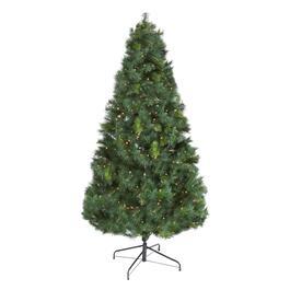6.5' Pre-Lit Scotch Pine Artificial Christmas Tree