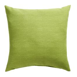 Solid Green Indoor/Outdoor Square Throw Pillow