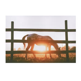 "24""x36"" Sunset Horse Canvas Wall Art view 1"
