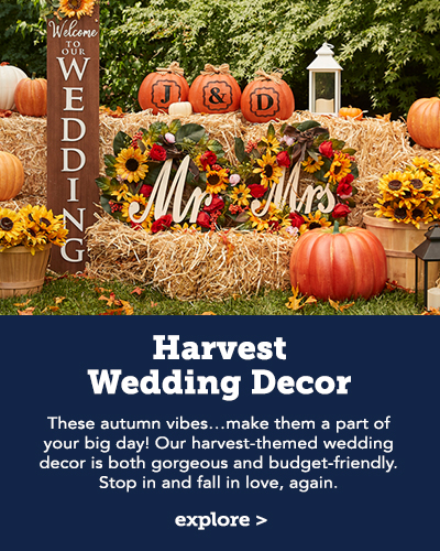 Harvest Wedding Decor. These autumn vibes...make them a part of your big day! Our harvest-themed wedding decor is both gorgeous and budget=friendly. Stop in and fall in love, again!