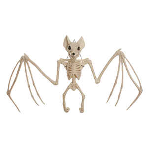 Seasons  Bat Skeleton  Halloween Decoration  12.5 in. H x 3.5 in. W 1 each