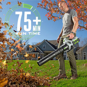 Ego Power Plus Battery Handheld Leaf Blower Ace Hardware