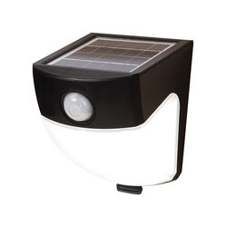 All-Pro Motion-Sensing 120 deg. LED Black Outdoor Floodlight Solar Powered