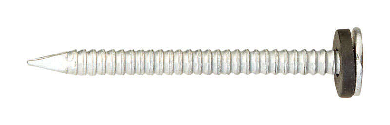 Ace  1-3/4 in. L Roofing  Steel  Nail  Round  Annular Ring Shank  1 lb.