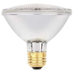 Westinghouse  Eco-Par  60 watt PAR30  Floodlight  Halogen Bulb  1,070 lumens Clear  1 pk