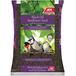 Ace  Black Oil Sunflower  Songbird  Black Oil Sunflower Wild Bird Food  Black Oil Sunflower Seed  10