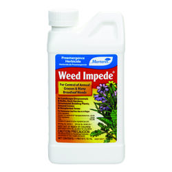 Monterey  Weed Impede  Weed Preventer  Concentrate  16 oz.