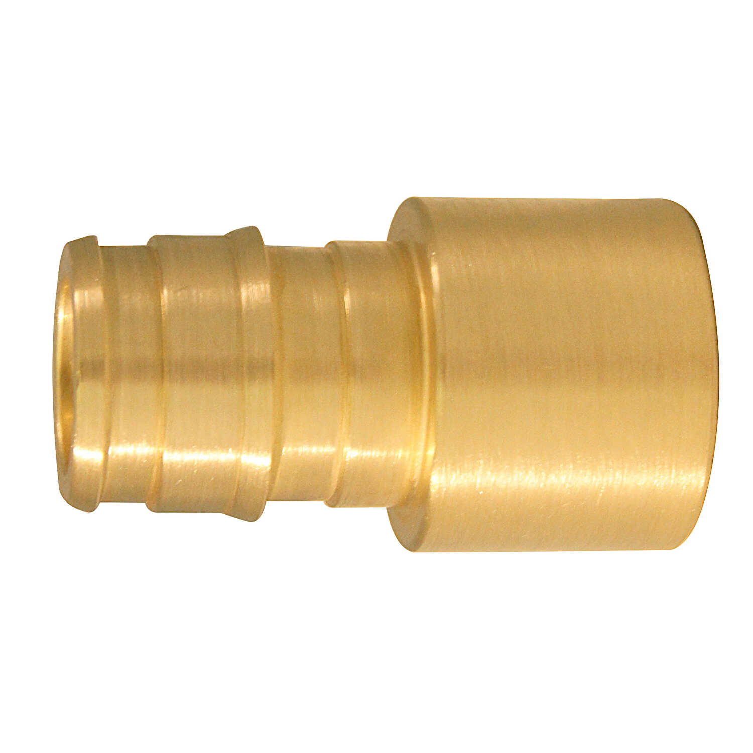 Apollo  Expansion PEX / Pex A  1/2 in. Swivel   x 1/2 in. Dia. PEX  Female Adapter  10 each